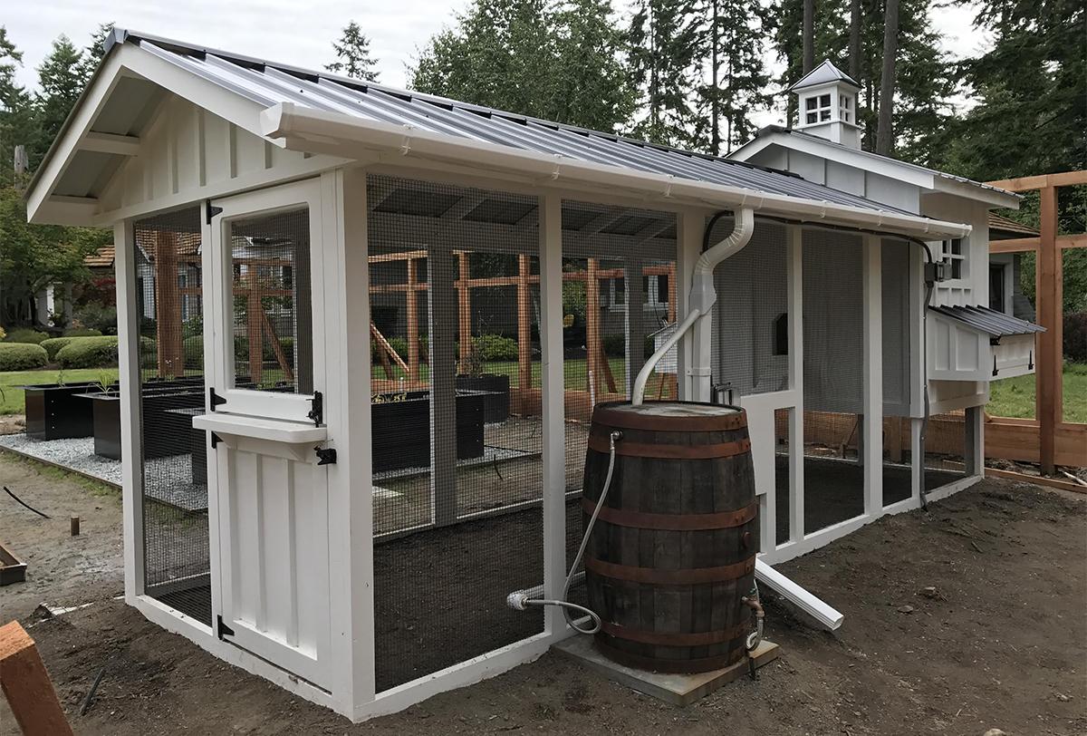 Carolina Coops – Craftsman chicken coop with dutch door and whisky barrel rain barrel