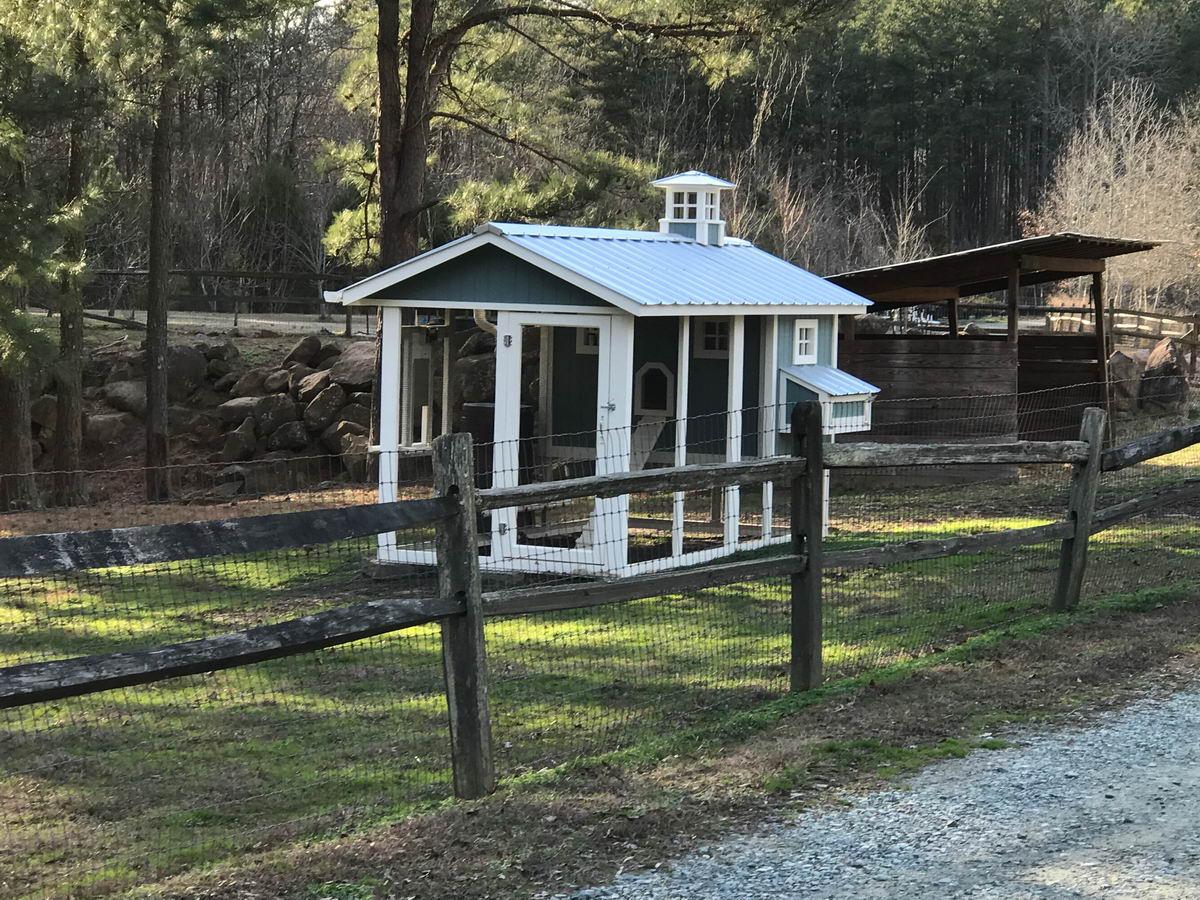 Carolina Coops – Custom designed chicken coops – For Gardens Sake