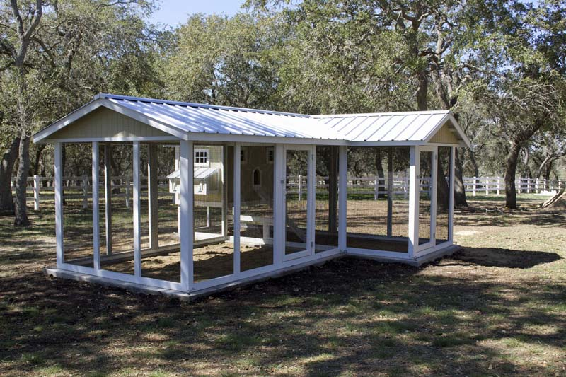 Carolina Coops-custom designed chicken coops-backyard chickens–47
