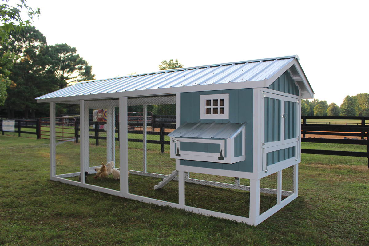 Carolina Coops-custom designed chicken coops-backyard chickens–51