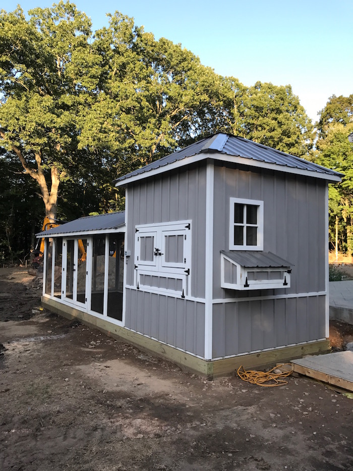 Carolina Coops- shed-style-custom-coop-10