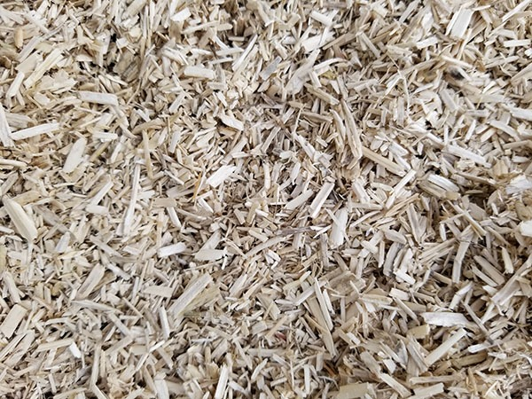 AubiChick industrial hemp bedding for chickens