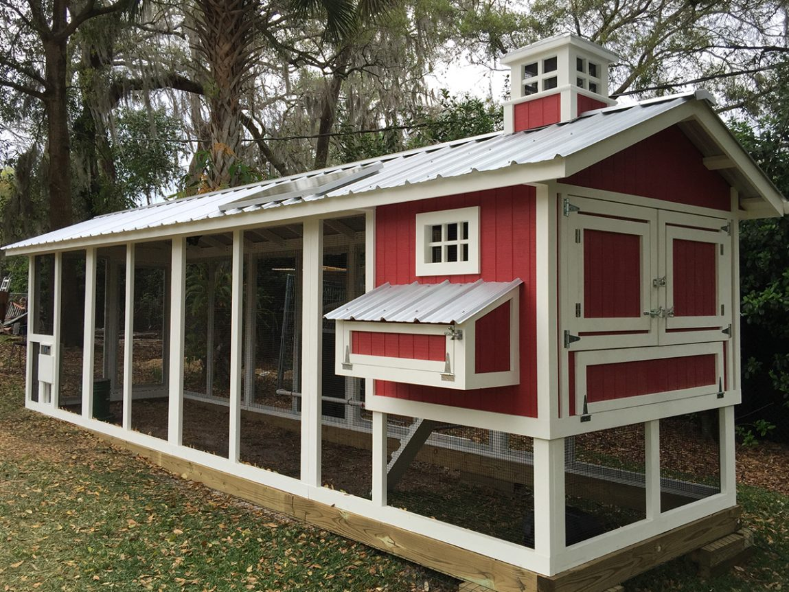 Carolina-Coops-Carolina chicken coop - red