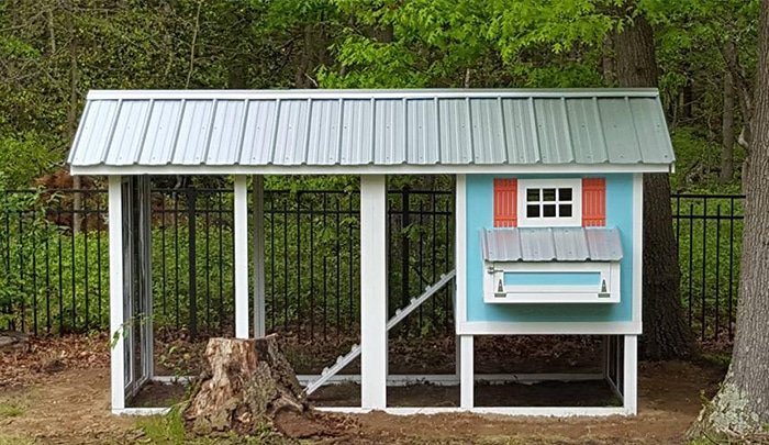 Carolina Coops blue Carolina chicken coop