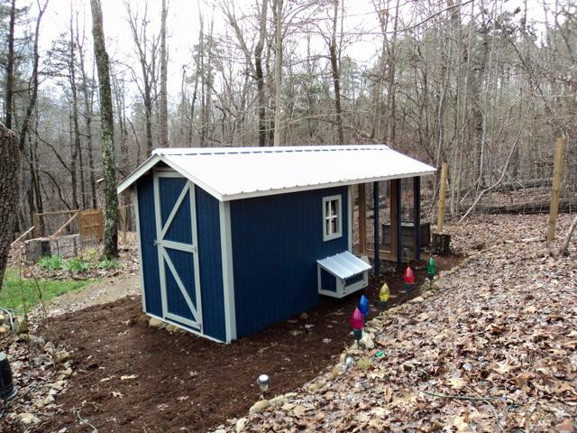 Carolina Coops – dark blue chicken coop