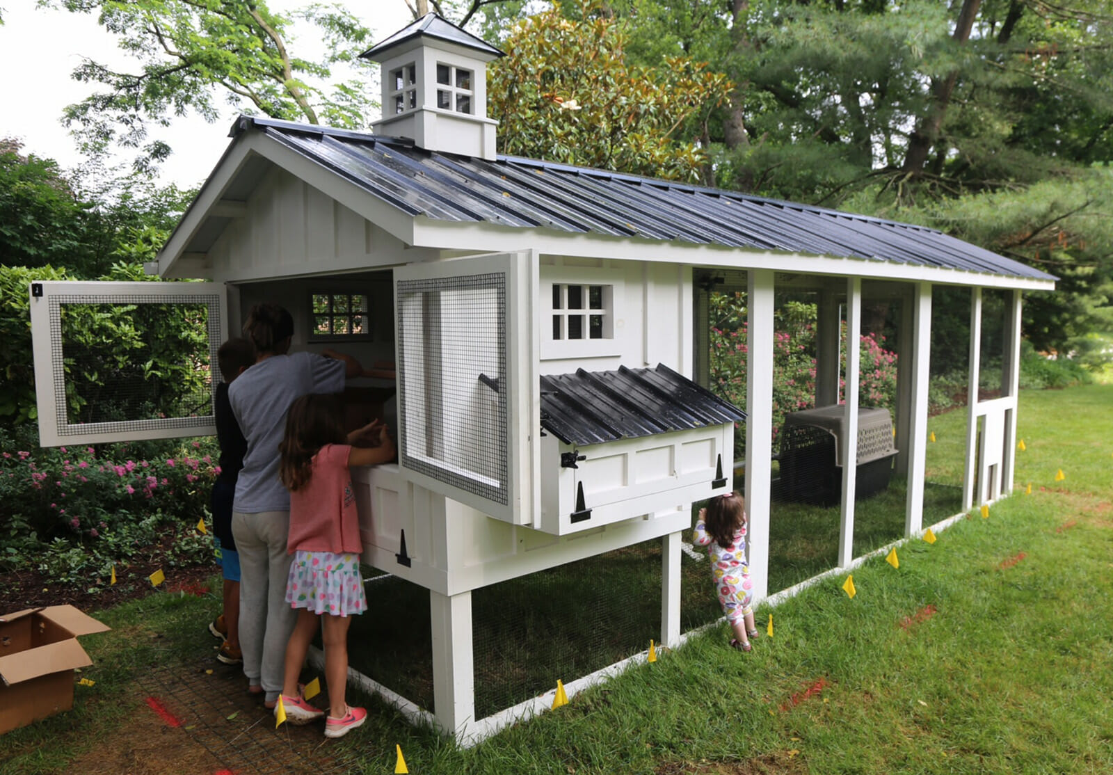 6′ x 18′ Carolina Coop with 4′ x 6′ henhouse in Washington, DC