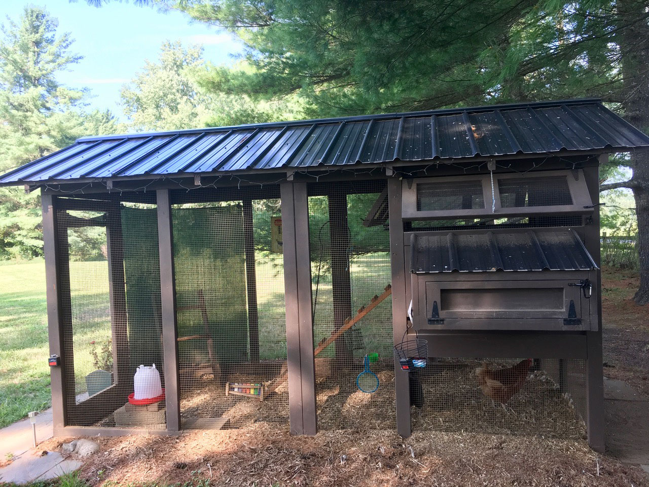 Carolina Coops – American Coop in Vermont with shade cloth (3)