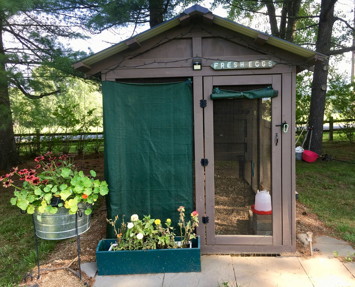 6′ x 12′ American Coop with 4′ x 6′ henhouse in Vermont with shade cloth