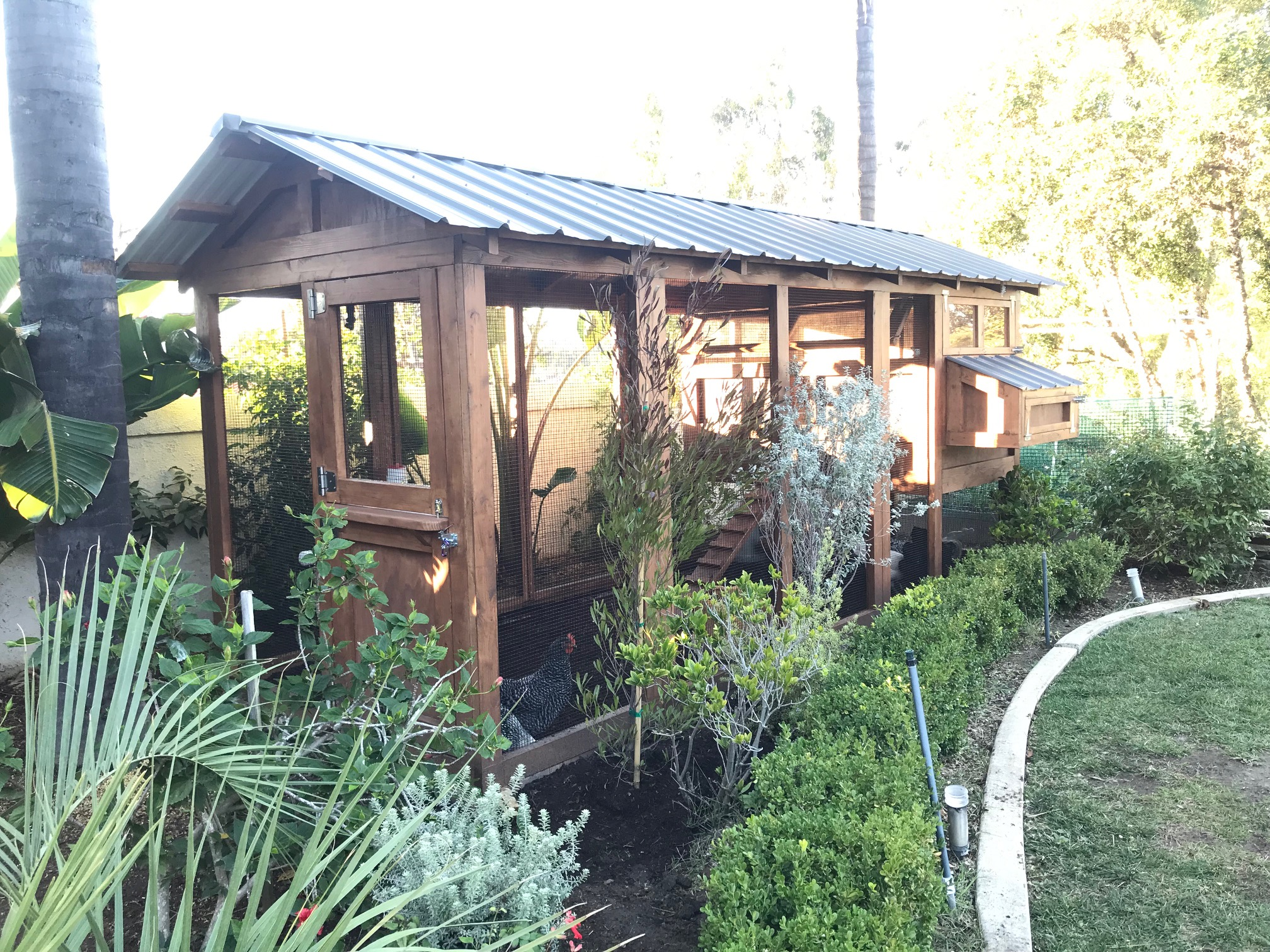 6′ x 15′ American Coop in San Juan Capistrano, California