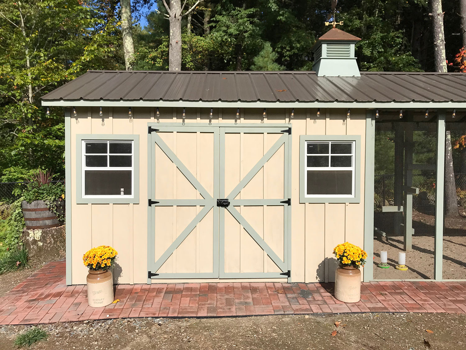 Custom Shed/Chicken Coop in Providence, Rhode Island