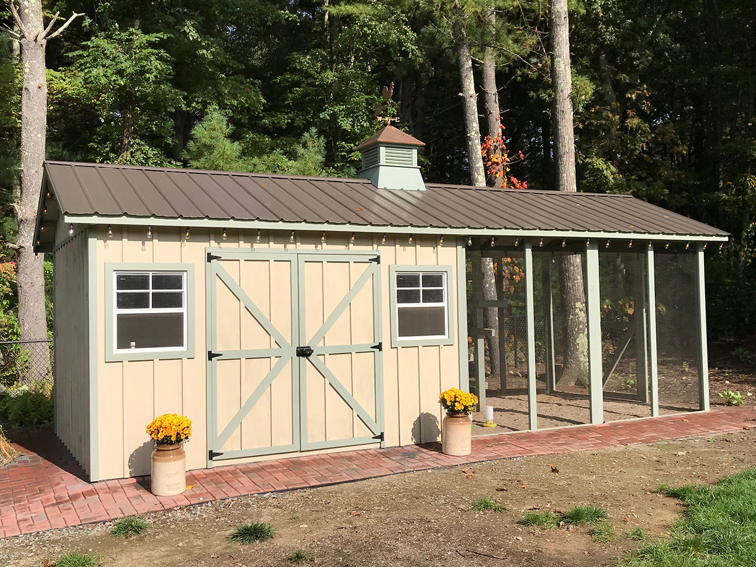 Carolina Coops - Custom Shed-Henhouse combo chicken coop (8)