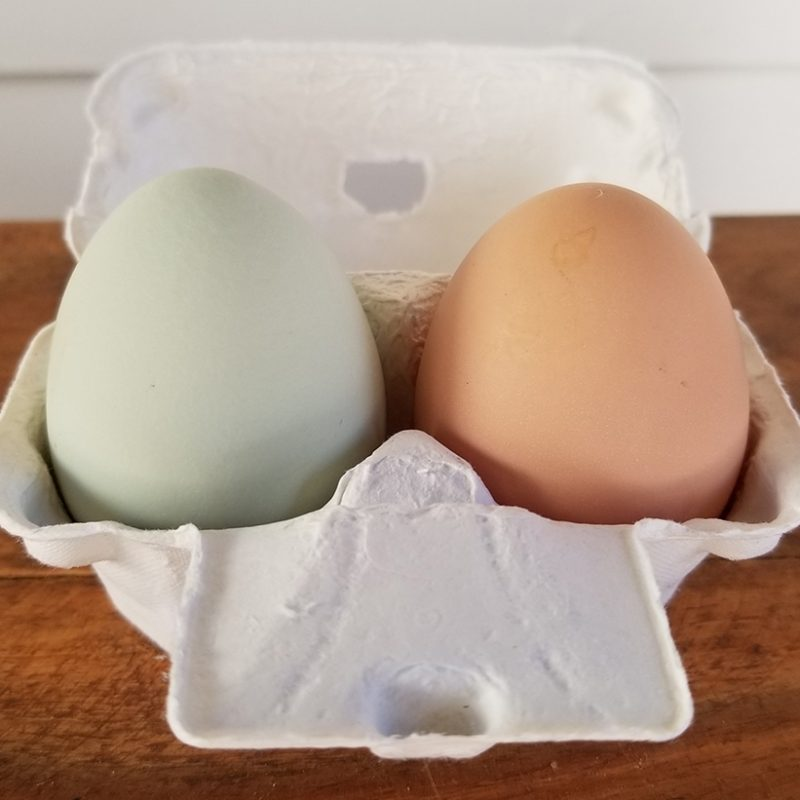 Carolina Coops - Resources - 5 reasons to eat eggs