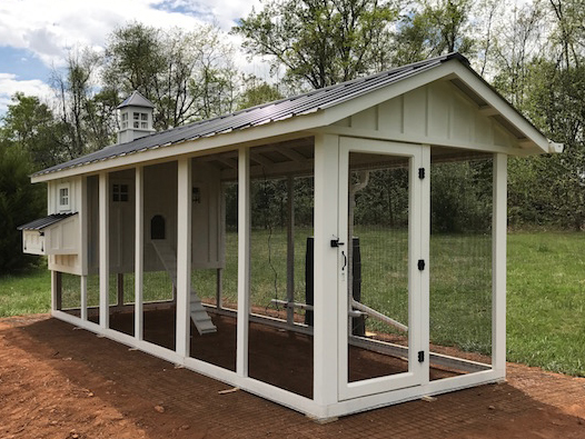 Large walk-in covered runs on our coops