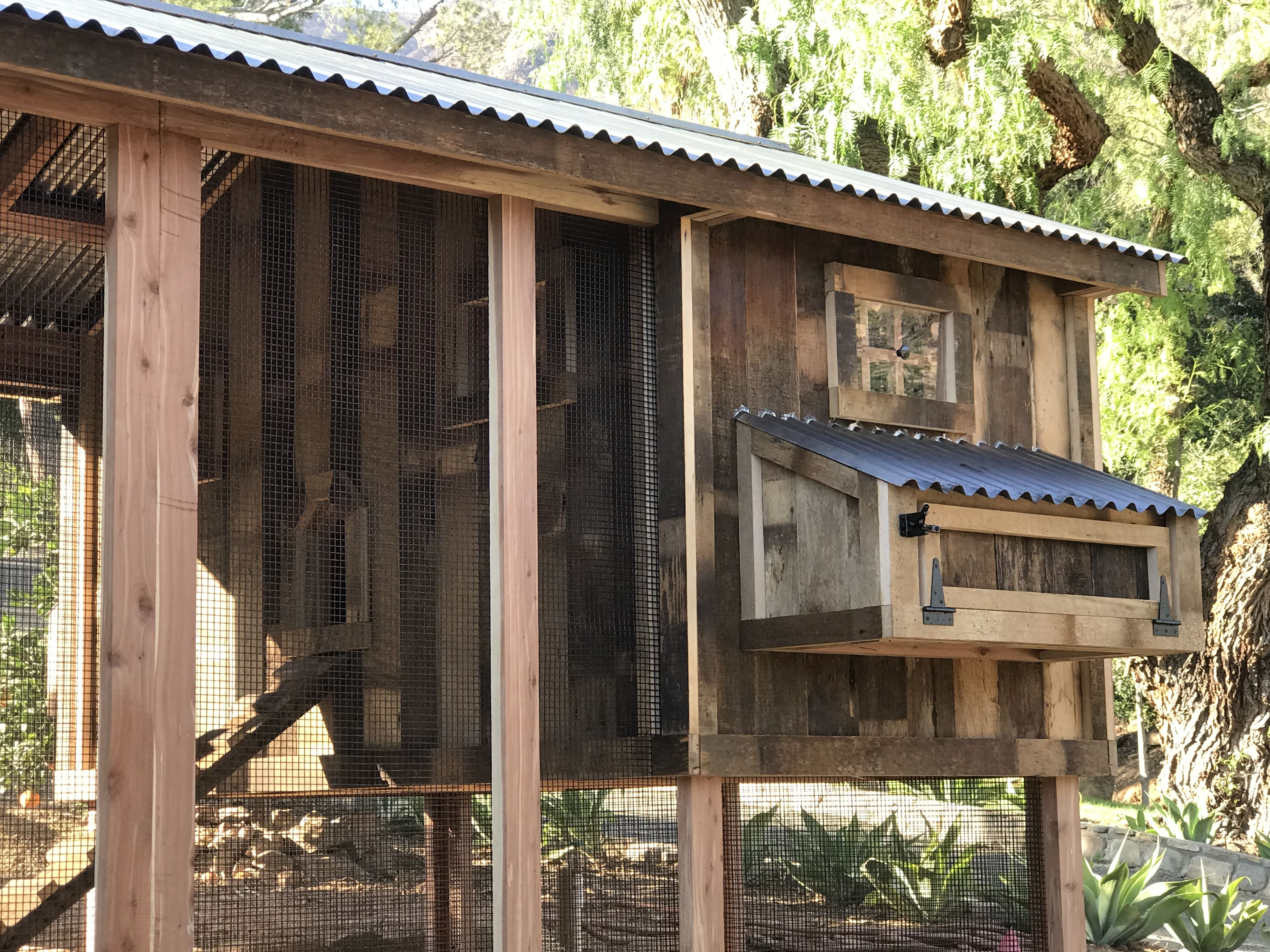Red cedar reclaimed barn wood coop with saltbox roof in Ojai, CA