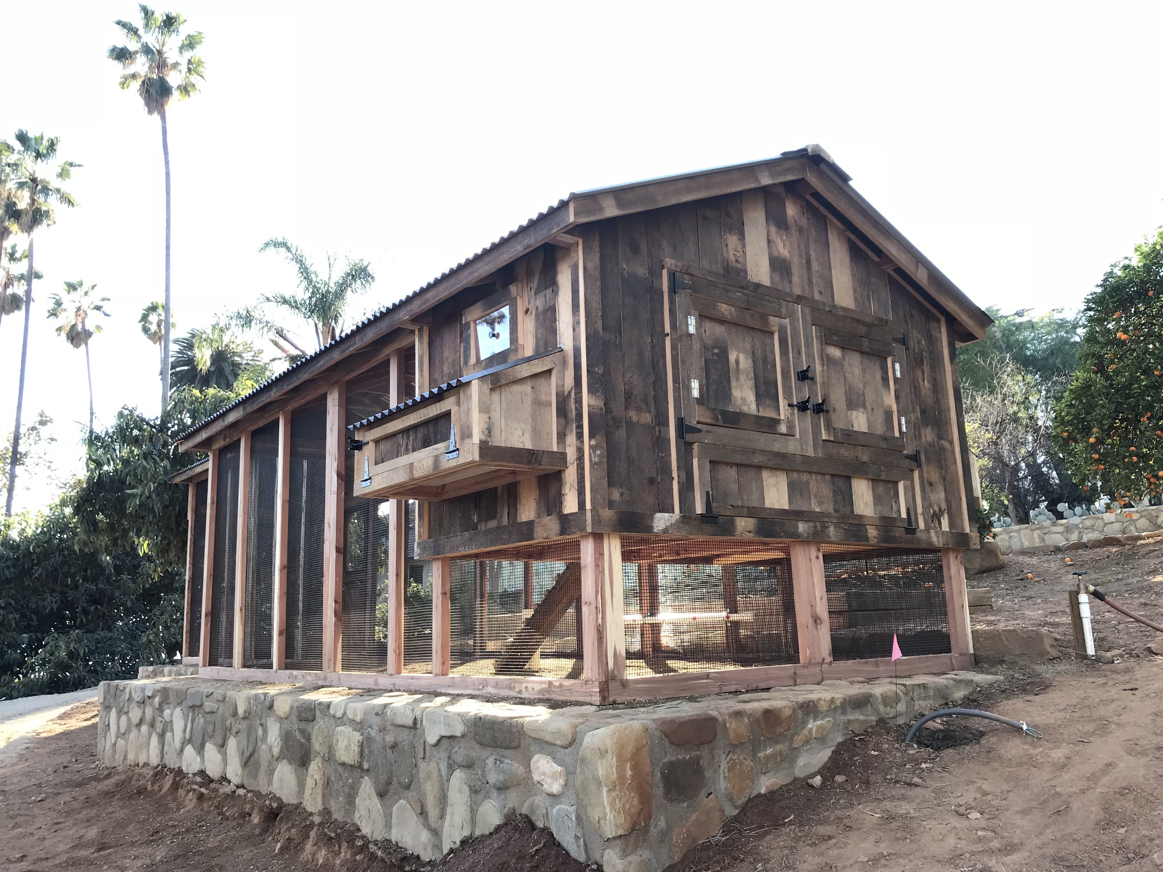 Red cedar reclaimed barn wood coop with saltbox roof in Ojai, CA (6)
