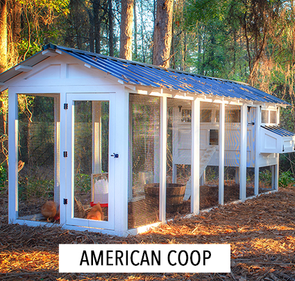 AMERICAN-coop-COOPS-PAGE