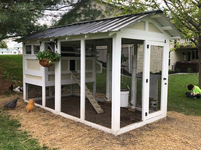 6′ x 12′ American Coop with 4'x 6′ henhouse in Sullivan, Illinois