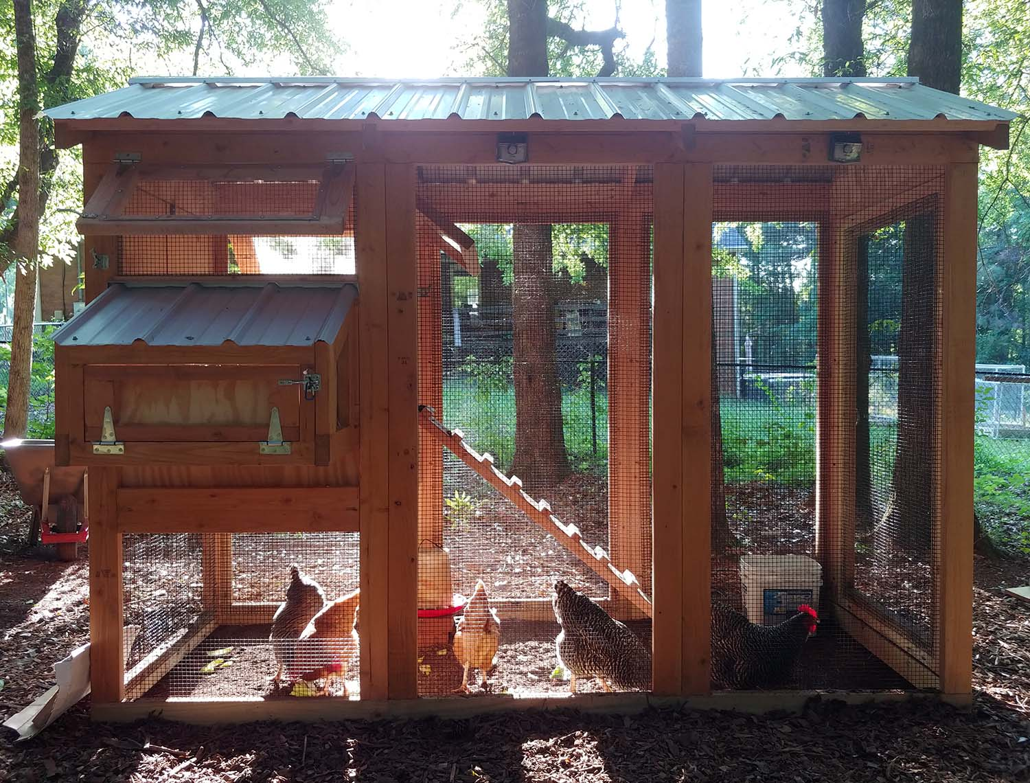 4′ x 9′ standard California Coop with 3′ x 4′ henhouse in Pine Mountain, Georgia