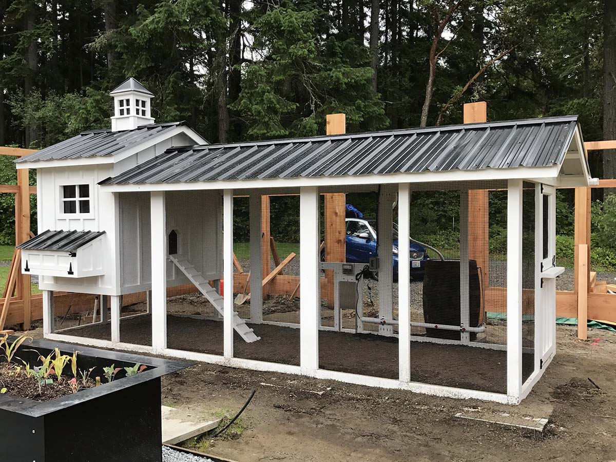 Carolina Coops Custom Craftsman Coop with board and batten siding in Gig Harbor, WA