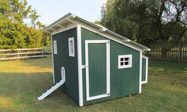 Carolina Coops custom shed coop