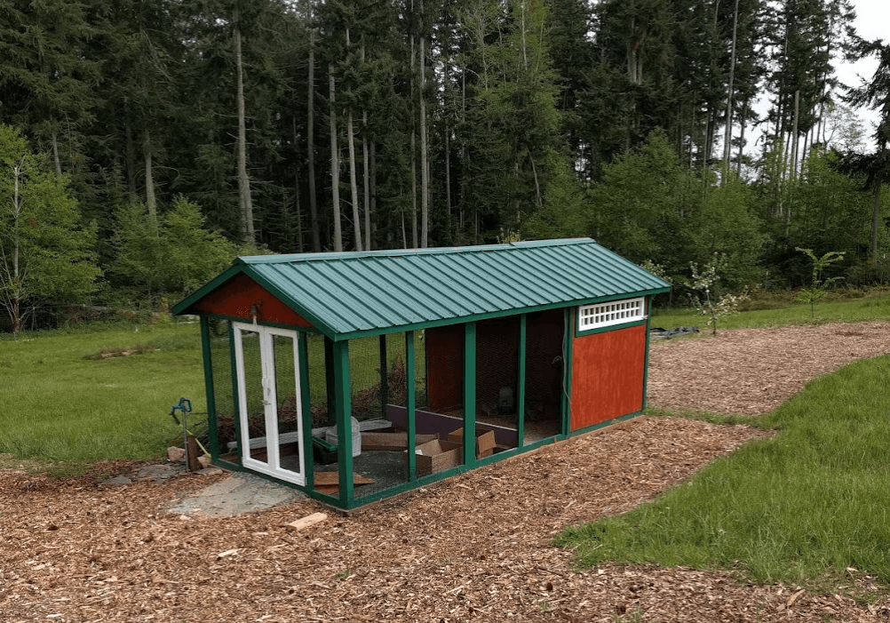Custom duck coop in Freeland, Washington
