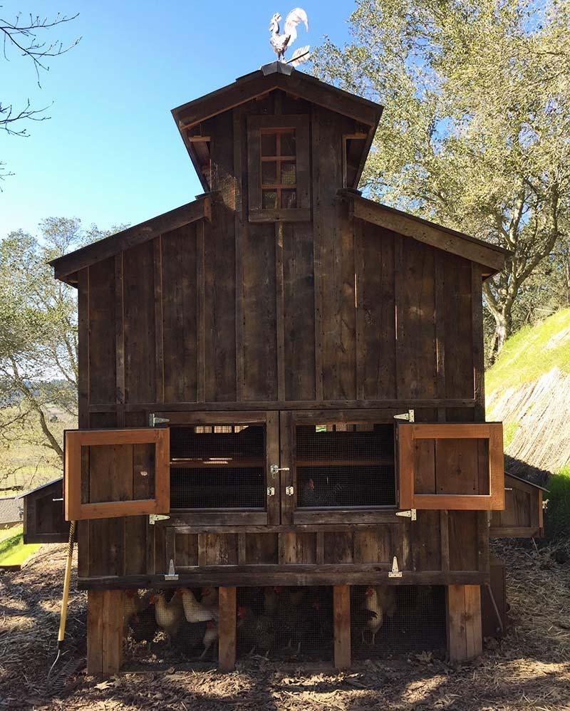 Custom red cedar and reclaimed barnwood coop in Calistoga, CA