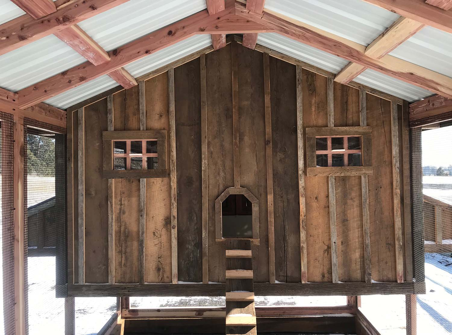 Front of 8′ x 4′ henhouse of an 8′ x 24′ Carolina Coop in Colorado Spring, CO
