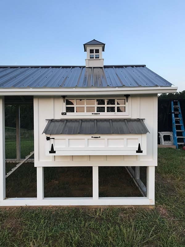 6′ x 10′ henhouse exterior on 10′ x 30′ Carolina Coop in Virginia with 5-gang egg hutch
