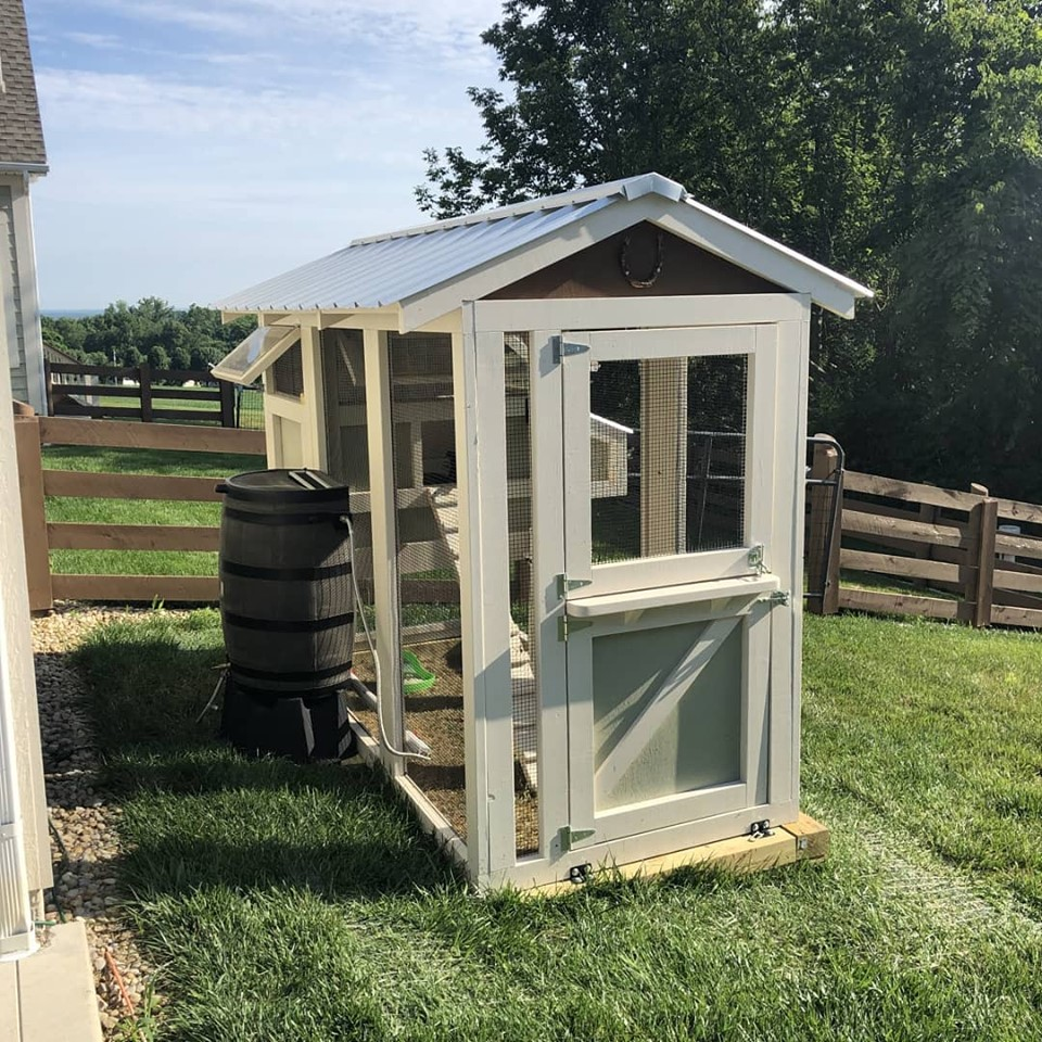 4′ x 9′ California Coop with 3′ x 4′ henhouse painted to match the house with a Dutch door and rain barrel waterbar system in Ohio