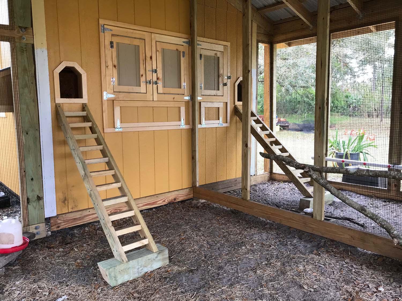 Henhouse front of custom chicken run in Orlando, Florisa