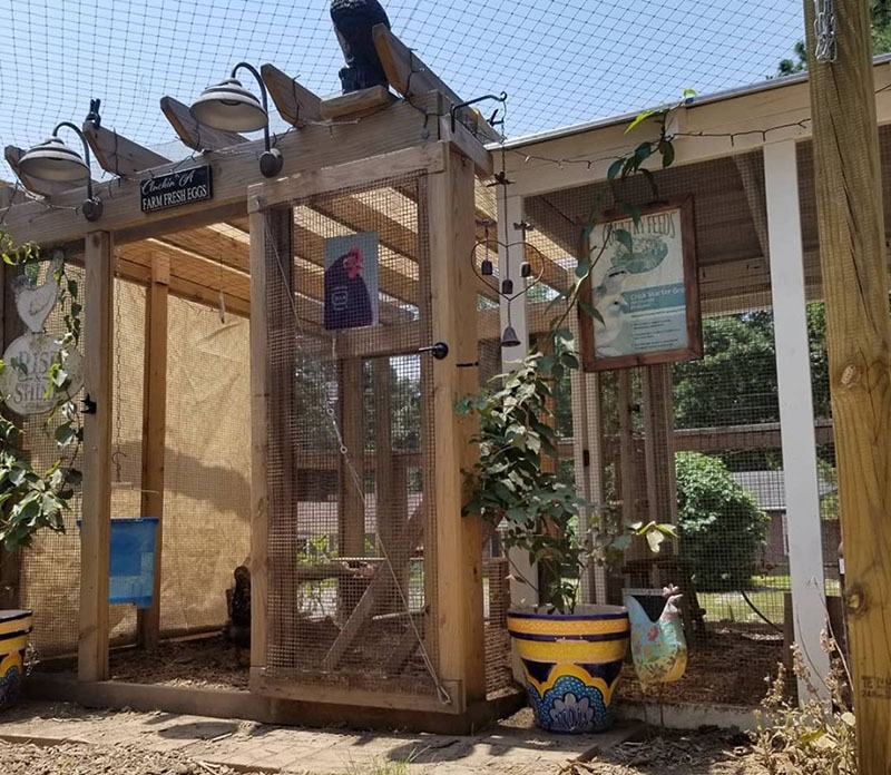pergola addition to chicken coop with poultry netting on top of fenced in area - Carolina Coops