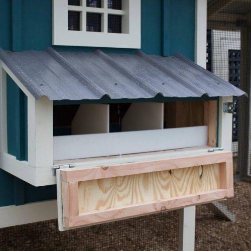 Carolina Coops egg hutch
