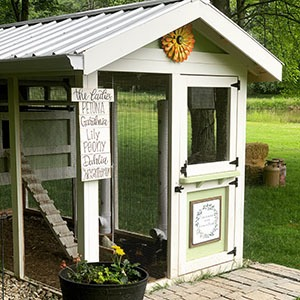 Carolina Coops -faqs- learn about our walk-in chicken coops