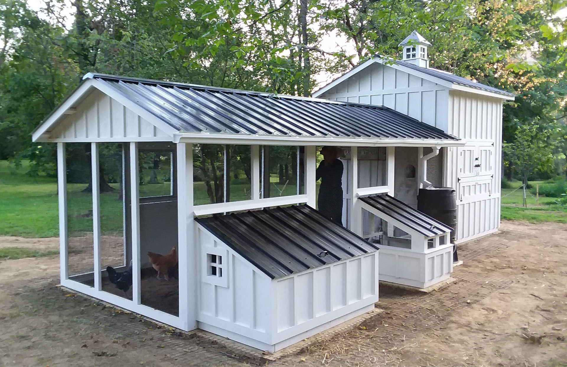Custom Craftsman chicken coop and duck house in Hamilton, Virginia with duck dipper
