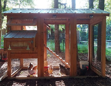 California Coop - Compare our chicken coops