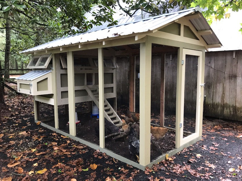 Standard 6′ x 12′ American Coop with 4′ x 6′ henhouse in Alabama