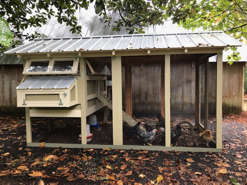 Standard 6′ x 12′ American Coop with 4′ x 6′ henhouse painted by customer
