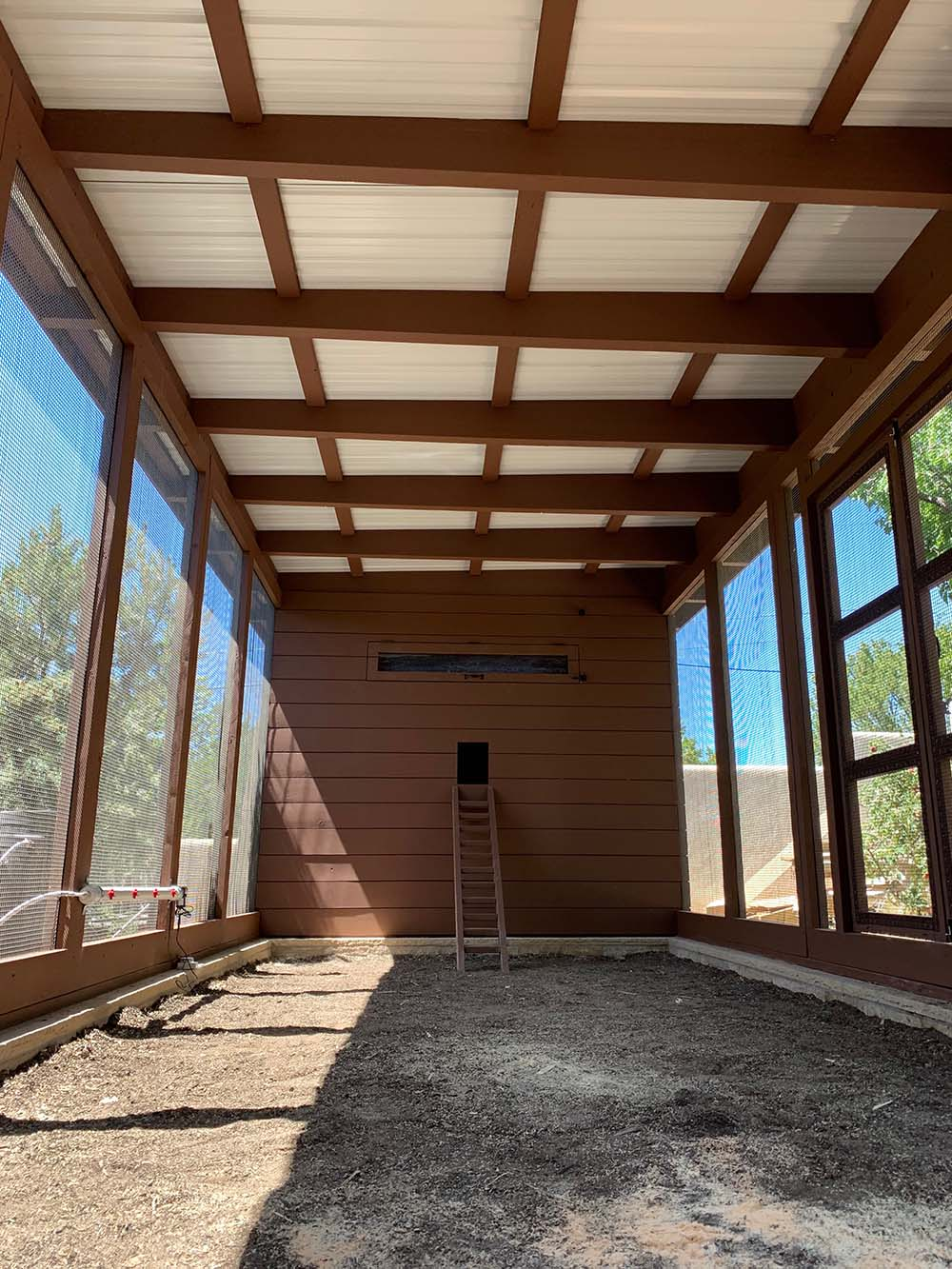 Inside the run of a modern custom chicken coop in Santa Fe, NM