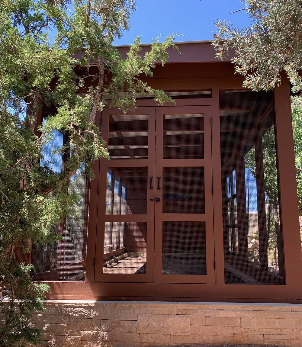 front view of modern custom chicken coop with double door and shiplap siding in Santa Fe, NM