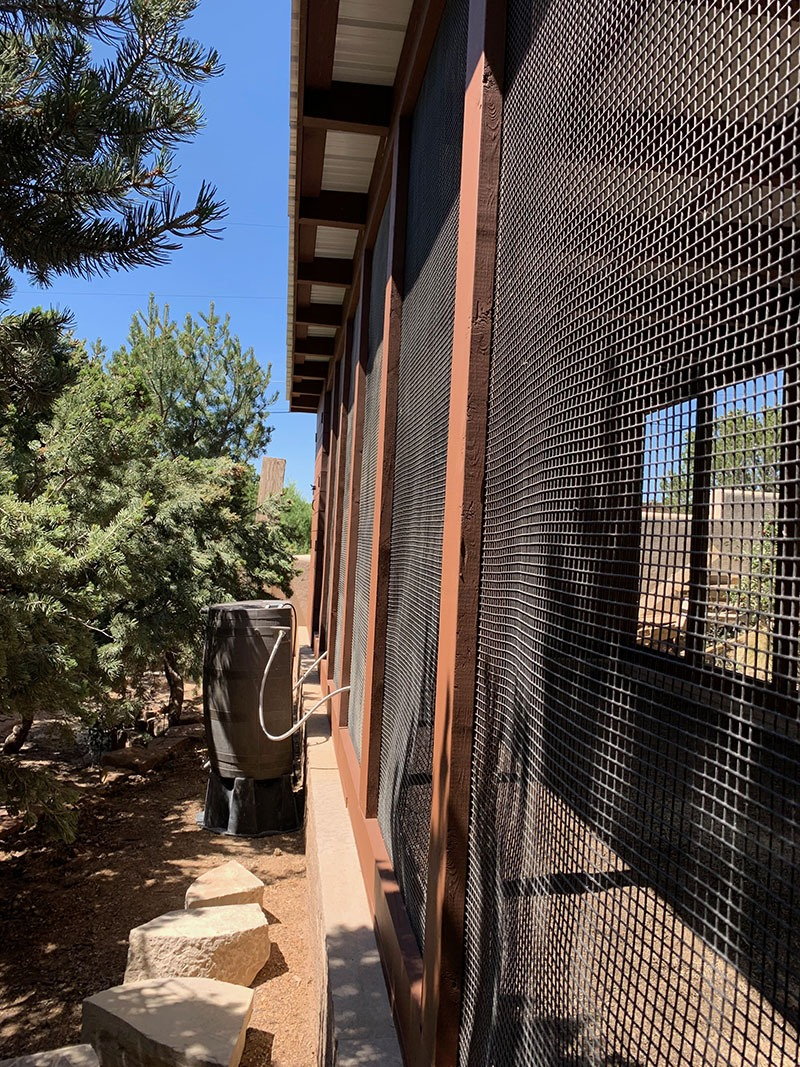 side view of modern custom chicken coop with rain barrel poultry water system in Santa Fe, NM