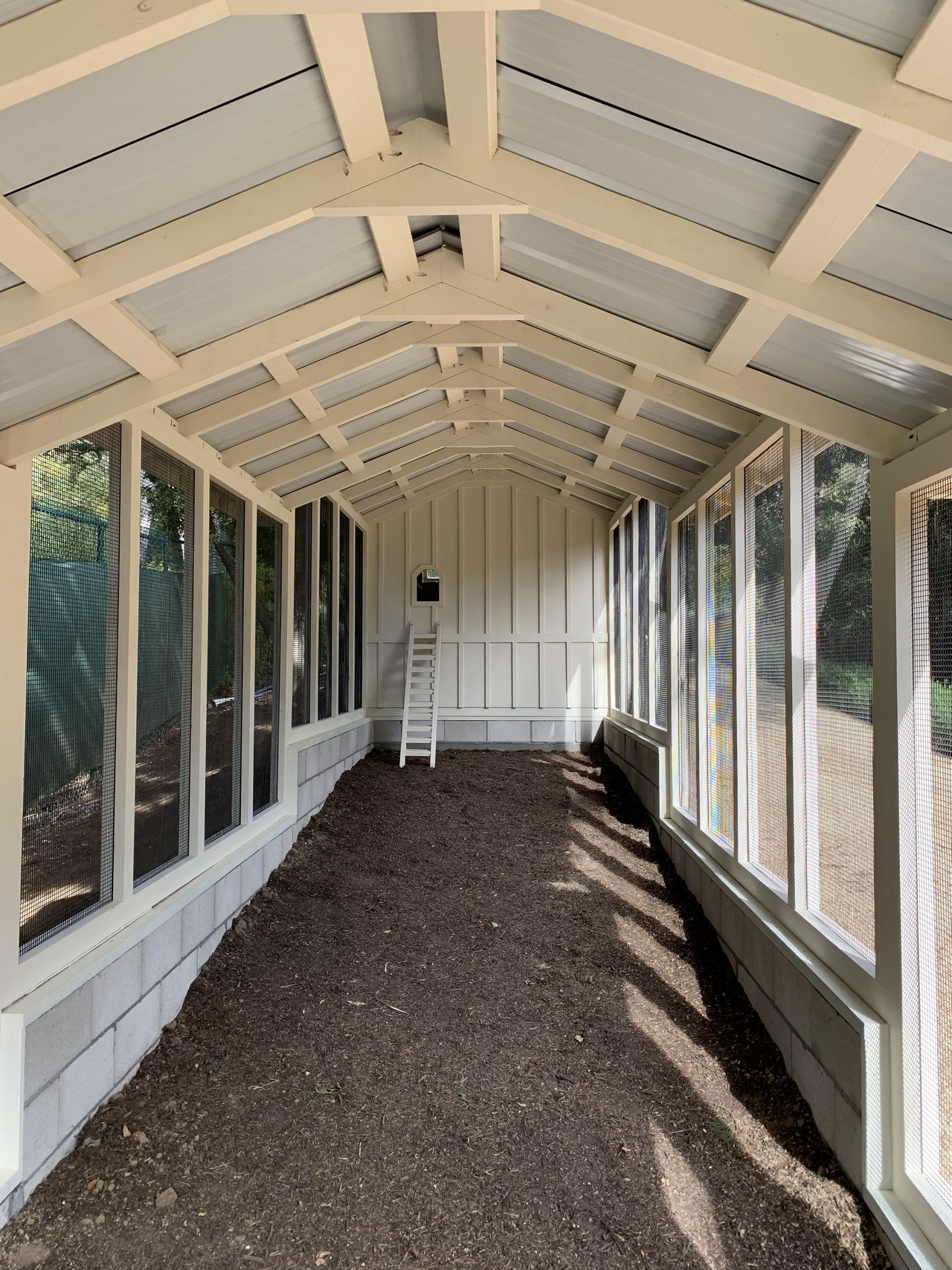 Inside the 32′ run of a custom Craftsman chicken coop in Santa Barbara, CA