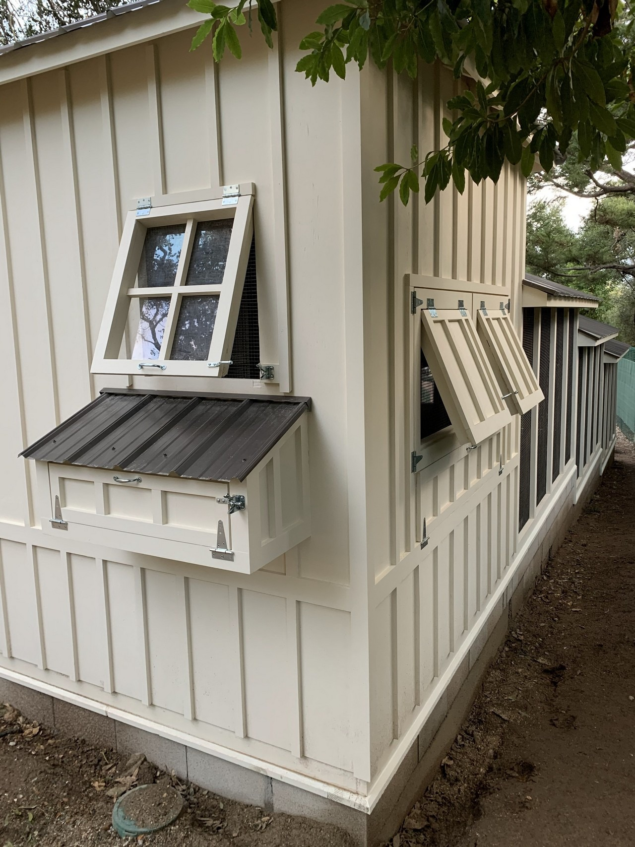 egg hutch and tilt out windows on the shed-henhouse combo of a custom Craftsman chicken coop in Santa Barbara, CA
