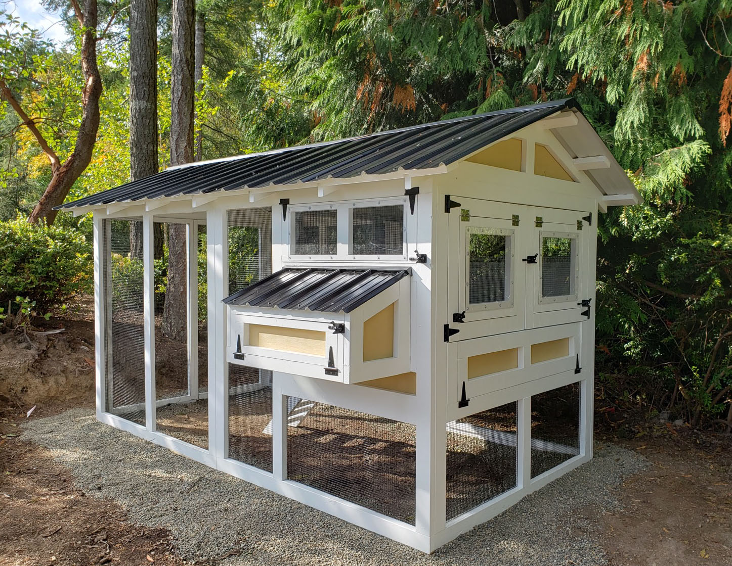 6′ x 12′ American Coop with 4′ x 6′ henhouse and cantilevered henhouse doors in Gig Harbor, Washington