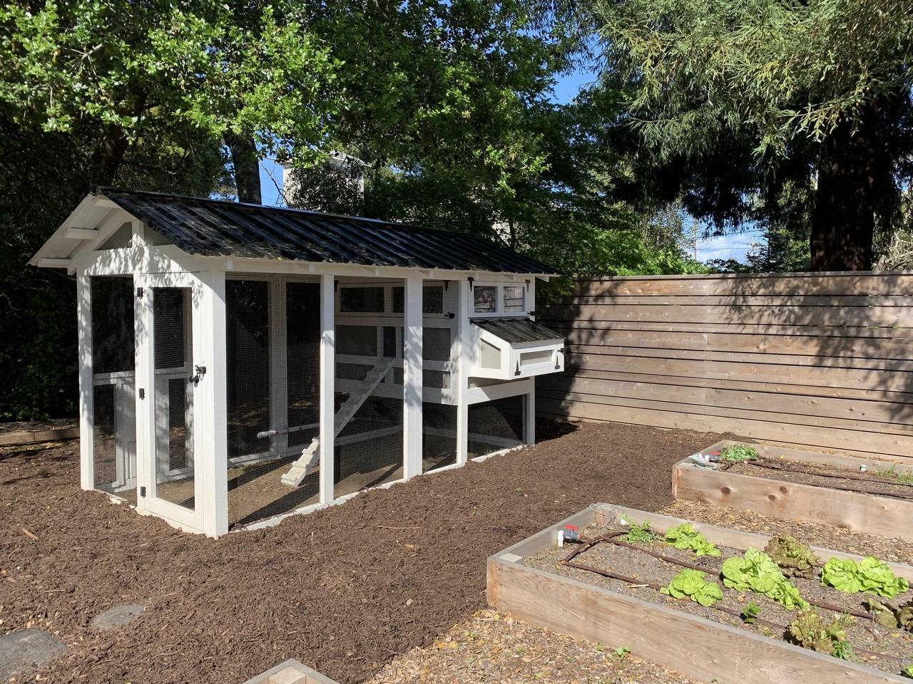 6'x12′ American Coop with 4'x6′ henhouse in Heraldsburg, California