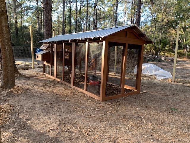 6'x18′ American Coop with 4'x6′ henhouse in Bluffton, SC (3)