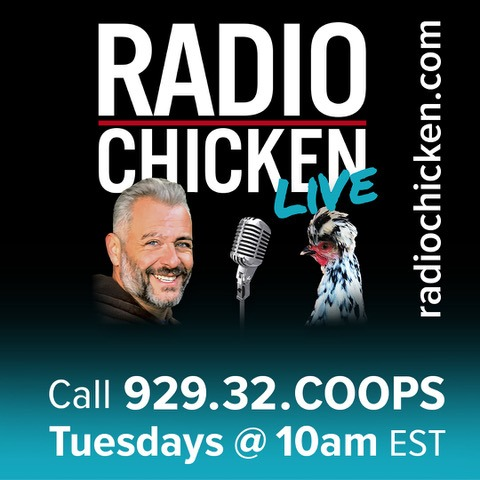 Radio Chicken Podcast - Live - Call-In show