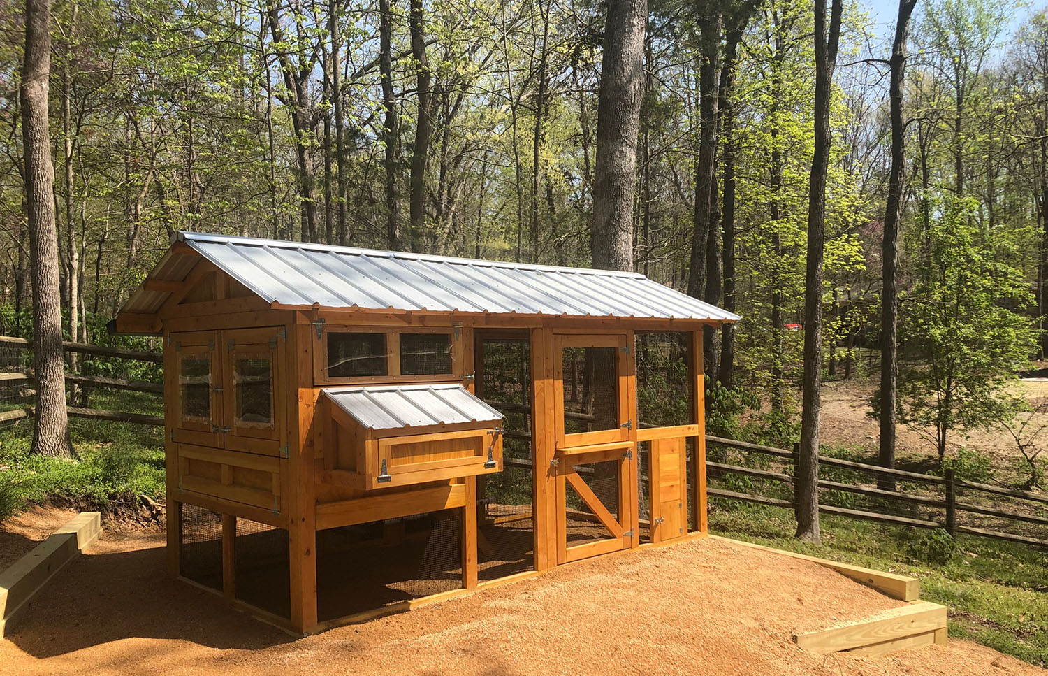 6'x12′ American Coop in Chapel Hill, NC with Dutch door