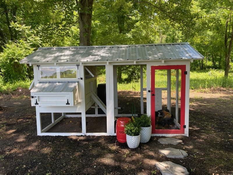 6'x12′ American Coop with automatic chicken run door
