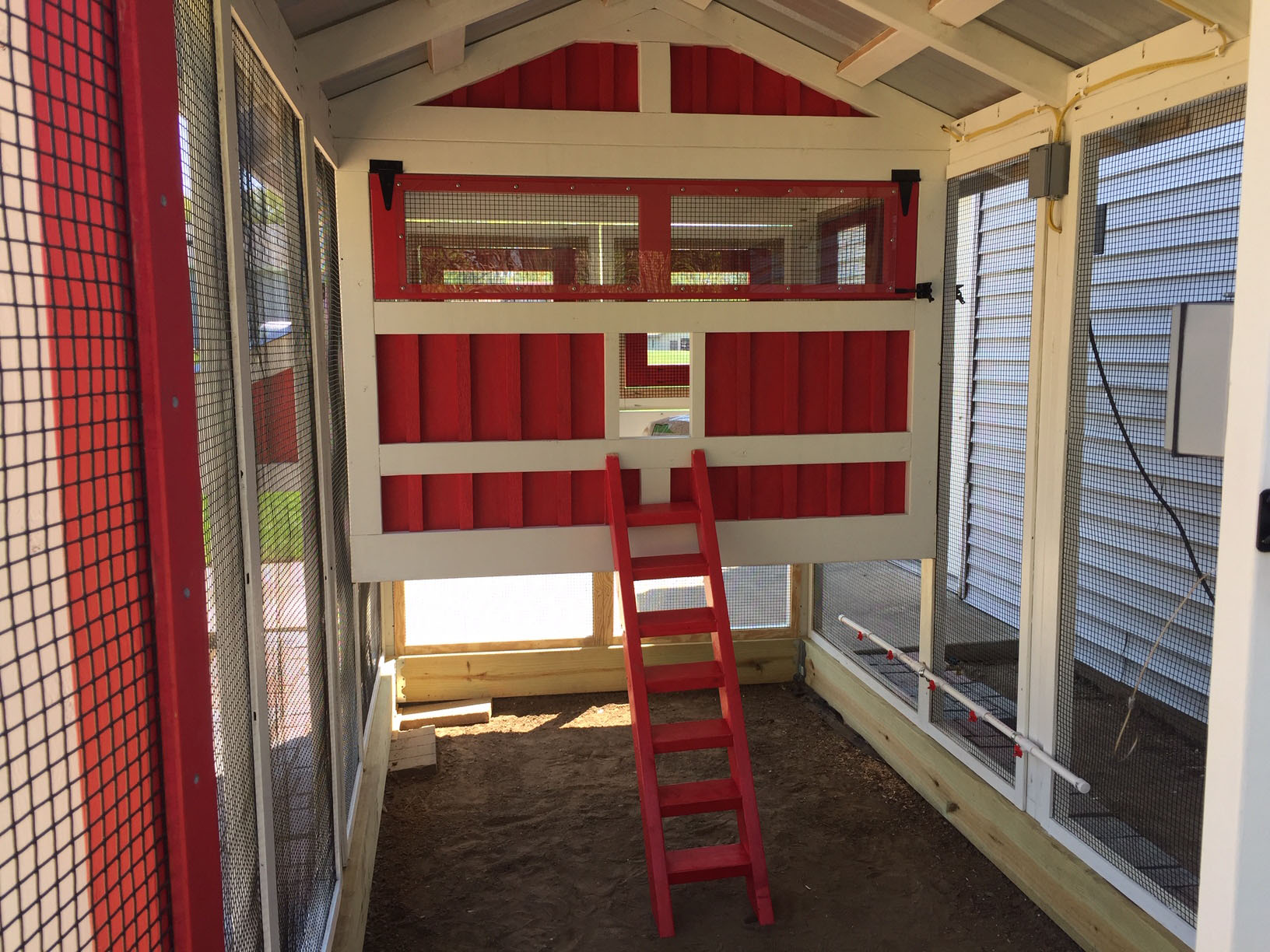 inside the run of 6'x12′ American Coop painted red and white