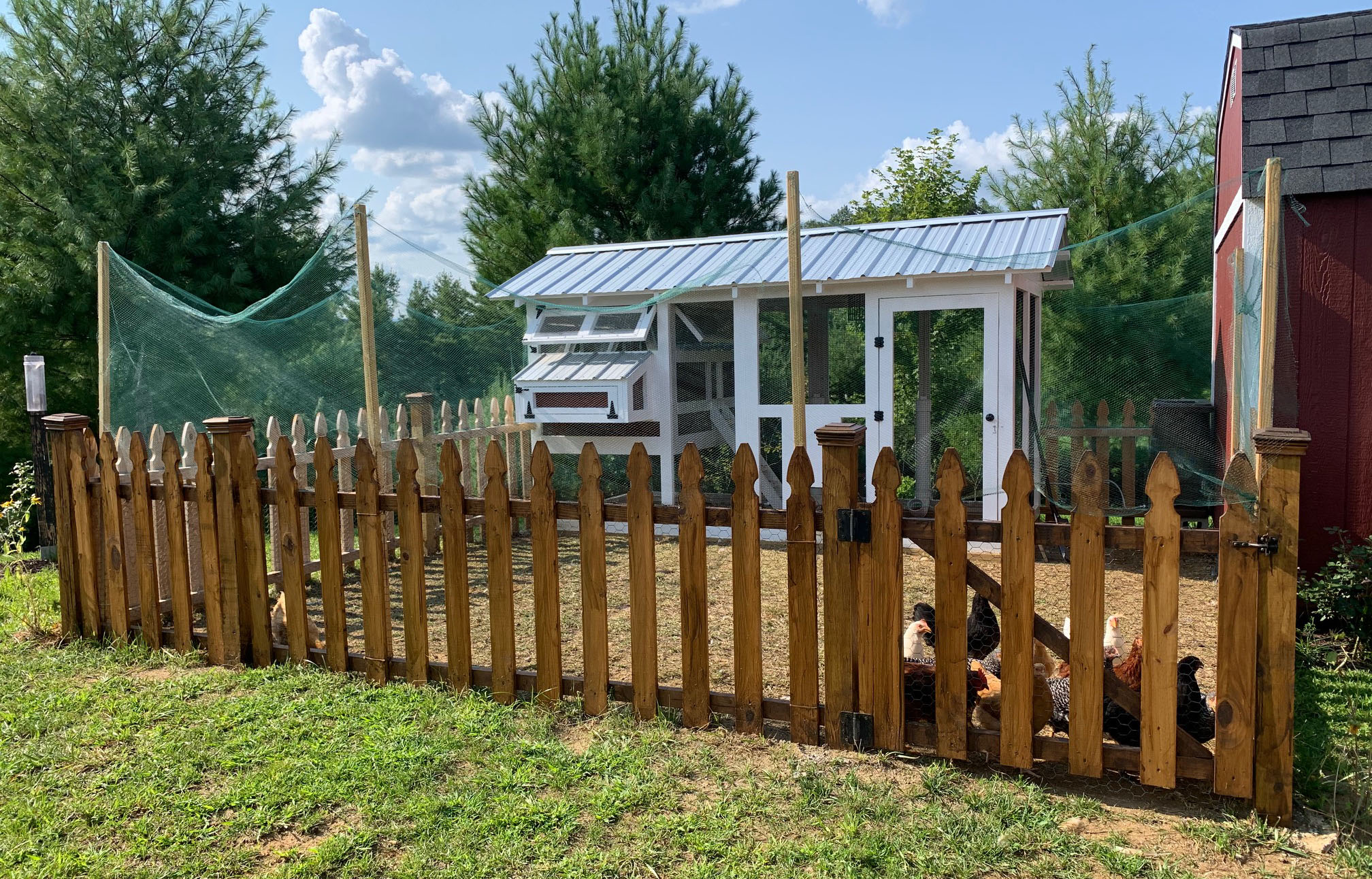 6'x12′ American Coop with manual run door in West Jefferson, NC with netted area for chickens